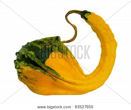 Fancy Yellow Pumpkin Isolated On White Background