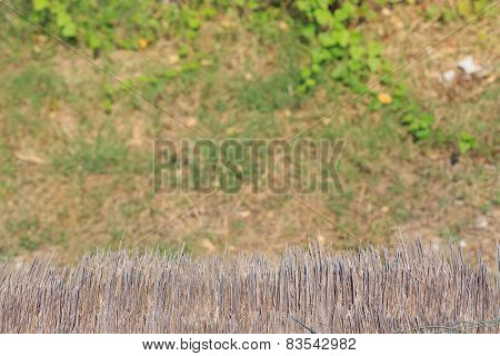 Thatched Roof On Blur Grass