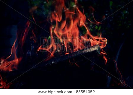 dry wood on fire burning