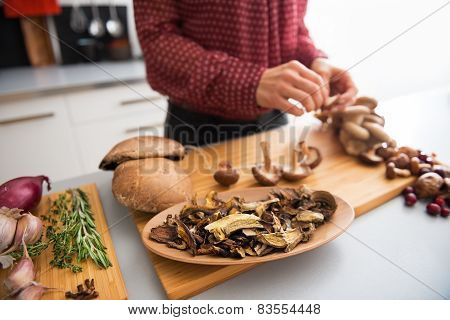 Closeup On Dried Mushrooms And Young Housewife Stringing Mushroo