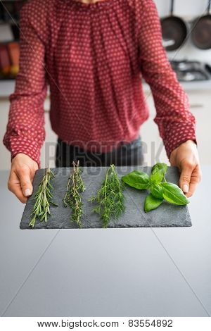 Closeup On Young Housewife Showing Fresh Spices Herbs On Stone Substrate