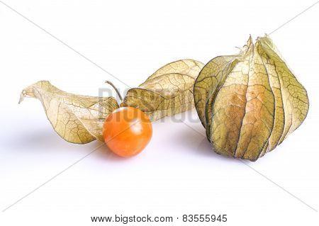 Healthy Fresh Gooseberry Cape
