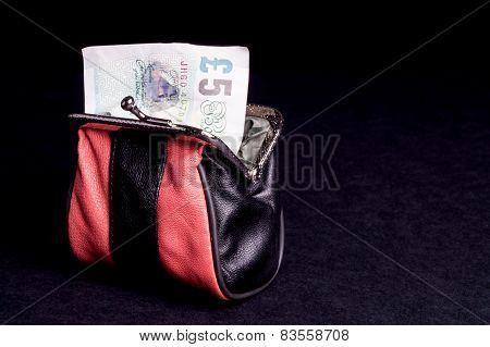 Money In The Purse