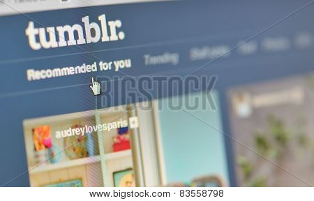 Galati, Romania, February 24, 2015:  Close-up Image Of  Tumblr Webpages