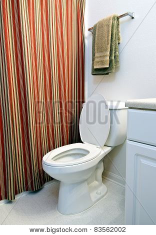 Nice Clean Toilet In Bathroom