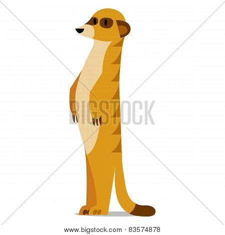 Vector Cartoon Meerkat Isolated On Blank Background
