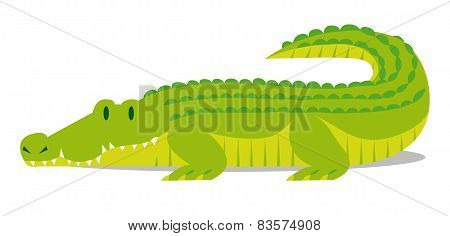 Vector Cartoon Crocodile solated On Blank Background