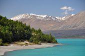 stock photo of tramp  - Lake Tepako shoreline seen from the head of the lake near Lake Tepako village New Zealand - JPG