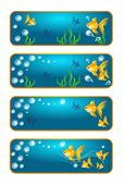picture of goldfish  - Set of four banners with goldfish on white - JPG
