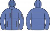 stock photo of down jacket  - Vector illustration of men - JPG
