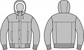 foto of down jacket  - Vector illustration of winter down jacket - JPG