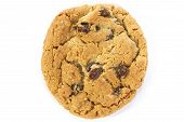picture of baked raisin cookies  - single oatmeal raisin cookie overhead view on white - JPG