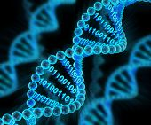 stock photo of molecules  - DNA molecules with binary code - JPG