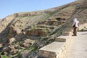 foto of dromedaries  - Bedouin  - JPG