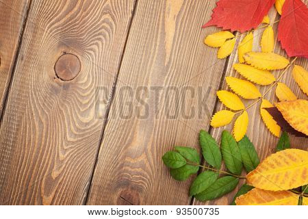 Colorful autumn leaves over wood background with copy space