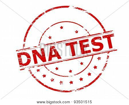 Rubber stamp with text dna test inside vector illustration
