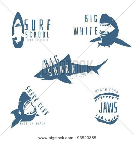 Shark vector logo concept for surf or beach club, isolated on white background.