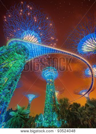 Supertree Grove in the Graden by the Bay in Singapore.
