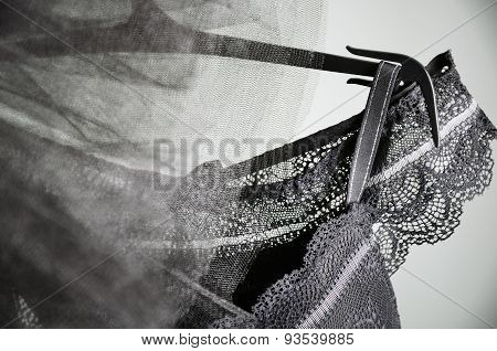 Black Lace Lingerie And Tulle Skirt Tutu Hanging On The Gray Background. Horizontal, Close Up