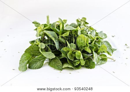 Bundle of fresh mint