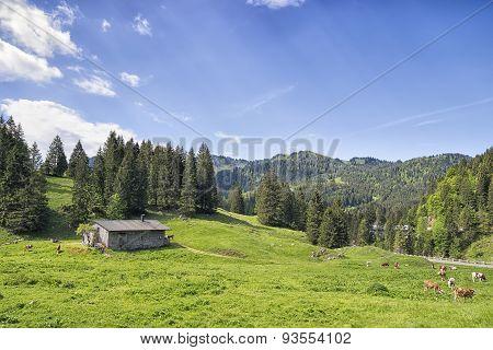 Bavaria Alps Near Spitzingsee