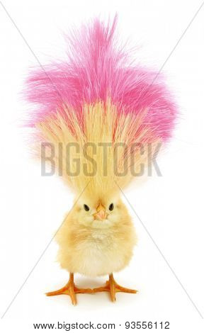 Crazy chick with ridiculous yellow pink hair