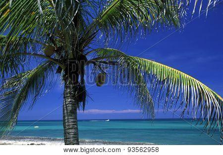 America Cuba Varadero Beach