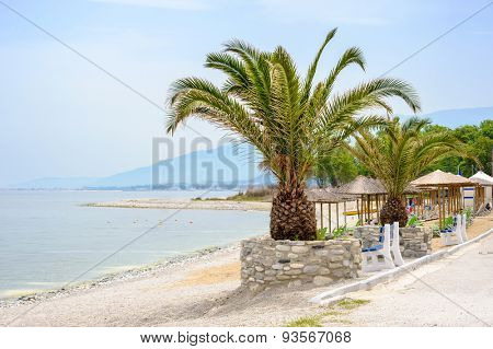 Empty Beach with Palm trees at summer, Skotina, Greece