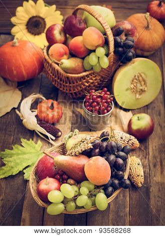 Autumn harvest - fresh autumn fruits