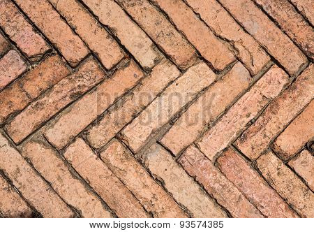 Brown Color Of Bricks Walkway In Garden.