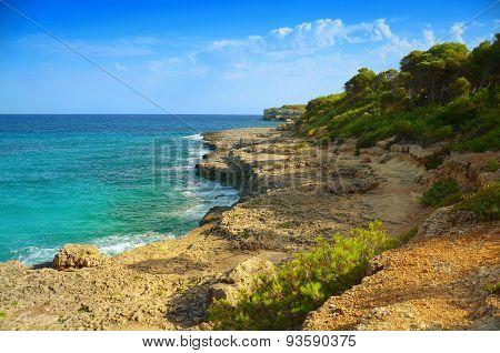 sea landscape rocky