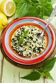 foto of nettle  - Risotto with nettles and lemon in the ceramic plate - JPG