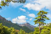 pic of seoraksan  - Seorak fall view in the morning light - JPG