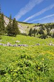 stock photo of bavaria  - View to summit of Jaegerkamp in the Alps in Bavaria Germany - JPG
