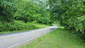 stock photo of mailbox  - Wide curve on a quiet country road with painted mailbox. ** Note: Soft Focus at 100%, best at smaller sizes - JPG