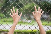 image of chain link fence  - close up hand holding on chain link fence - JPG