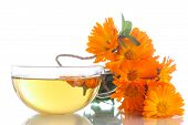 stock photo of marigold  - Herbal tea with marigold flowers on a white background - JPG