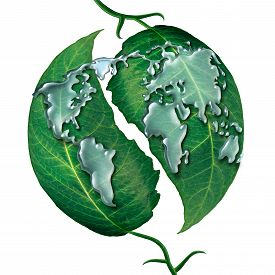 image of ecology  - World leaf water drop concept as a group of liquid rain drops shaped as the map of the earrth on green leaves as a symbol and metaphor for ecology protection or clean global water isolated on a white background - JPG