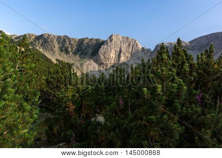 Sinanitsa peak and forest arond the lake, Pirin Mountain, Bulgaria