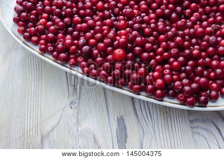 Ripe juicy cranberries bright autumn colorful background