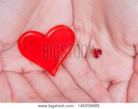 Two Red Hearts In Female Handful