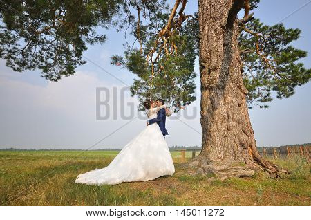 Wedding photo shooting. Groom and bride embracing under pine tree.