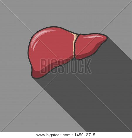 Liver icon with long shadow. Vector illustration. EPS 10