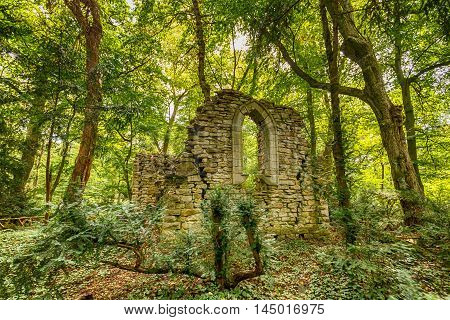 Ancient ruins surrounded by forest, outdoor shot