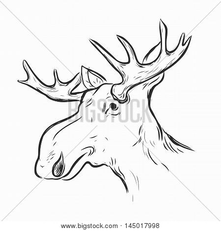 Elk, Deer Mascot Head.Elk Head Animal Symbol.Engrave isolated vector.Hand Drawn Graphic.Isolated on white background.Great for Badge Label Sign Icon Logo.Design.Quality Elk, Deer Emblem.
