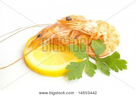 Fresh shrimps with slice of lemon