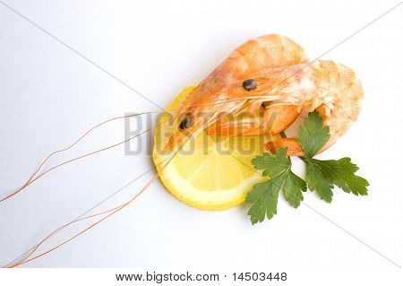 Fresh shrimps with slice of lemon