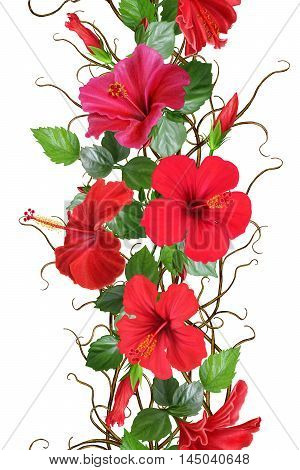 Vertical floral border. Pattern seamless. Flower garland weaving of thin branches red tropical hibiscus flowers. Isolated on white background.