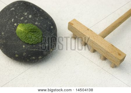 Black stone and green leaf with a wooden rake on white sand of a zen garden. Symbol of life and meditation.