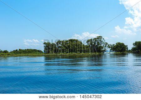Rio Negro in Amazon, Brazil